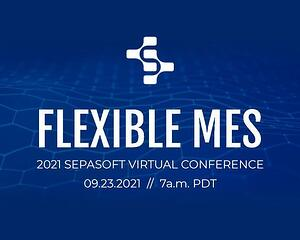 Flexible MES_Social and Web Page